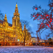 Vienna town hall — Foto Stock