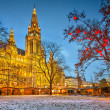 Vienna town hall — Stock Photo #36226039