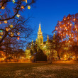 Vienna town hall and park — Stock Photo