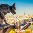Gargoyle on Notre Dame Cathedral — Stock Photo #36963713