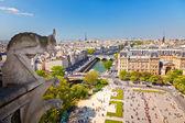 Gargoyle on Notre Dame Cathedral — Stock Photo