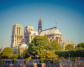 Notre Dame de Paris at sunny day — Stock Photo