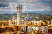 View on Siena Cathedral — Stock Photo
