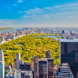 View on central park, New York — Stock Photo