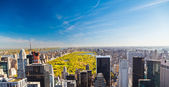 View on central park, New York — Stok fotoğraf