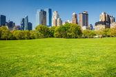 Central park, new york — Photo