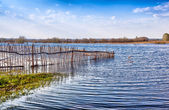 Flooded Old Wooden Fence. — Stock Photo