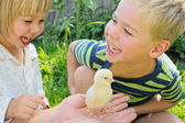 Boy, girl and chicken — Stock Photo