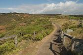 Footpath to Addiscot Beach — Stock Photo