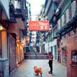 Stock Photo: Person with dog in narrow street in Macau