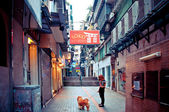 Person with dog in narrow street in Macau — Stock Photo