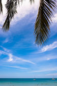 Tropical sea with palm leaves and blue sky — Stock Photo
