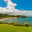 Kaanapali Beach, famous tourist destination in Maui, Hawaii — Stock Photo #40279109