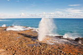 Spouting Horn on the south shore of Kauai island in Hawaii — Stock Photo