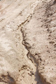 Sand surface water erosion — Stock Photo
