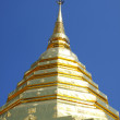 The golden pagoda — Stockfoto