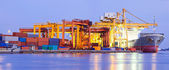 Port Terminal Panorama Industry — Stock Photo