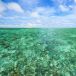 Coral scape at andaman sea Thailand — Stock Photo
