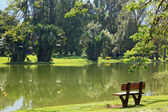 Wooden chair at lake garden at taiping malaysia — Stock Photo