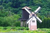 Traditionelle alte holländische windmühle — Stockfoto