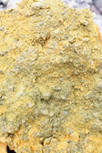 Sulfur Texture — Stock Photo