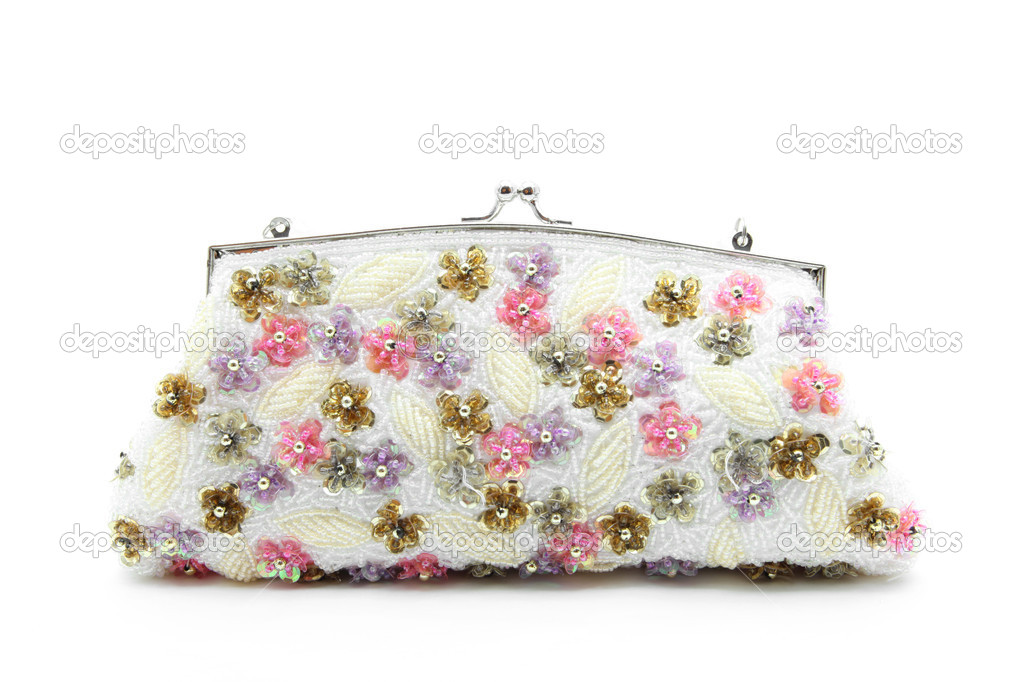 Glamour woman wallet or purse on white background — Stock Photo #12419269