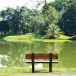 Chair at lake — Stock Photo #14959157