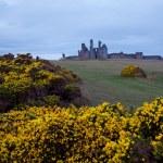 Dunstanburgh castle UK — Stock Photo #16789143