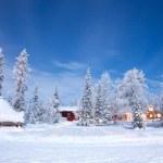Winter landscape at night — Stock Photo