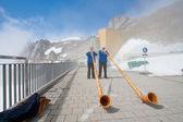 Reproductor de cuernos alpino — Foto de Stock