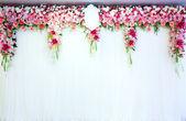Arche de fleurs — Photo