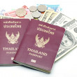 Passport and Money — Stock Photo