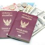 Passport and Money — Stock Photo #29870713