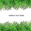 Fresh grass frame with space for text — Stock Photo