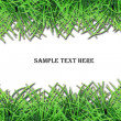 Fresh grass frame with space for text — Stock Photo #29871215