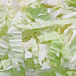 Green cabbage using as Background — Stock Photo