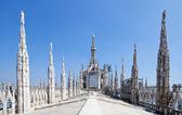 Milan Duomo Cathedral — Stockfoto
