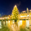 Christmas tree light — Foto de Stock
