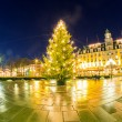Christmas tree light — Stock fotografie