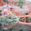 Daigoji Temple Kyoto Japan — Stock Photo