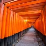 Torri gates Kyoto — Stock Photo