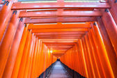 Torii gates — Stock Photo