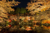 Daigoji Temple Kyoto Japan night — Stock Photo