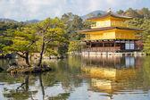 Kinkakuji Temple — Stock Photo