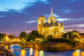 Kathedrale notre-dame paris — Stockfoto