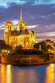 ノートルダム大聖堂パリ — ストック写真