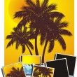 Summer tropical banner, vector illustration palm tree photo — Stock Vector