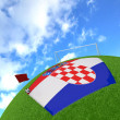 Croatiflag on 3d football — Stock fotografie #13717039