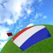 Netherlands flag on 3d football — Lizenzfreies Foto
