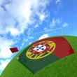 Portugal flag on 3d football — Zdjęcie stockowe